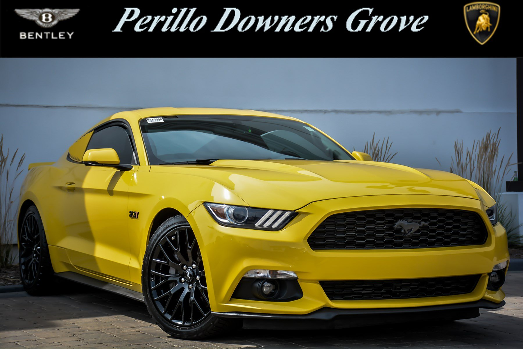 Pre Owned 2015 Ford Mustang EcoBoost Premium Custom 2dr Car in